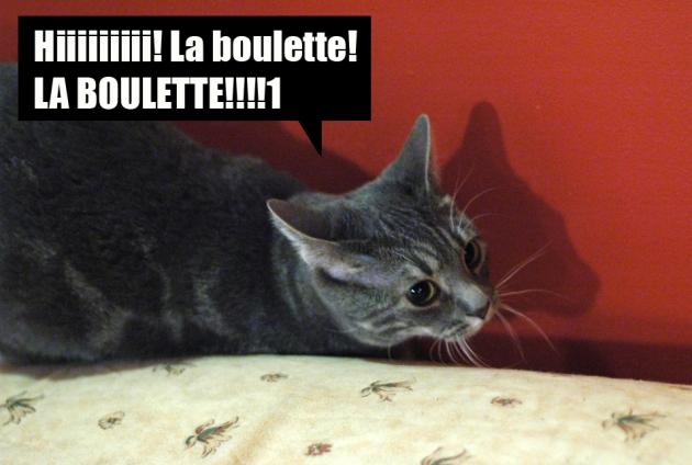 boulette_6808